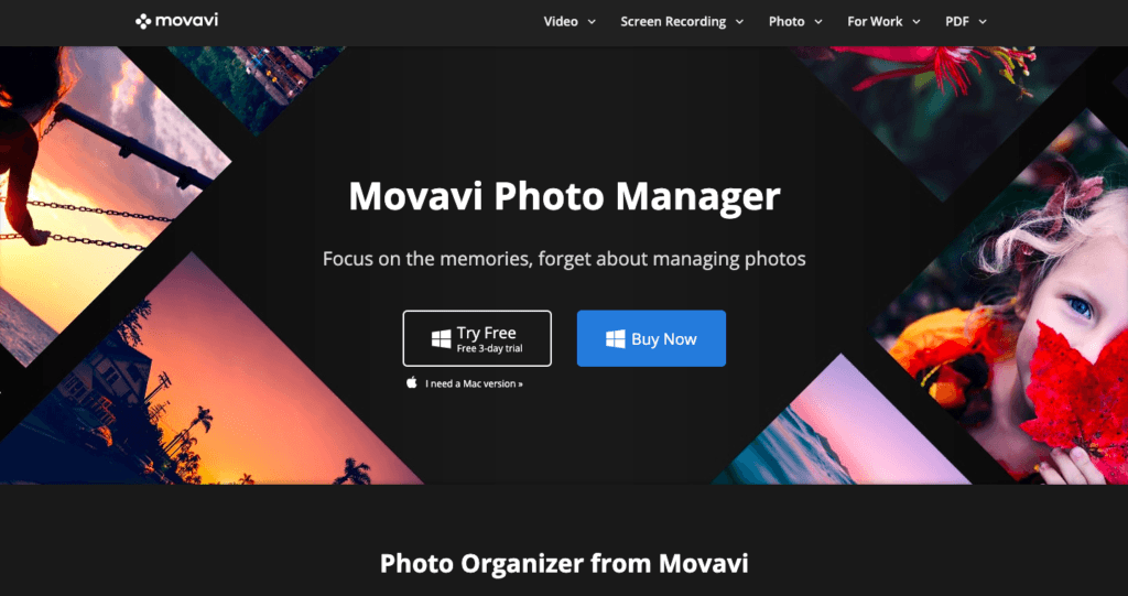 Movavi Photo Manager-Mejor visualizador de fotos para Windows 10