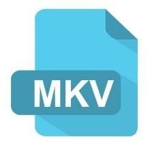 fichero mkv